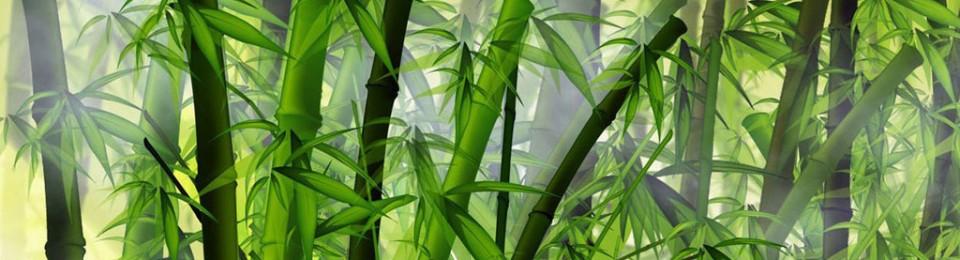 bambukoksredskap